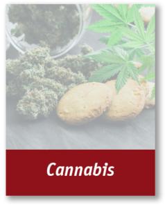 Cannabis Insurance Brochure Thumbnail